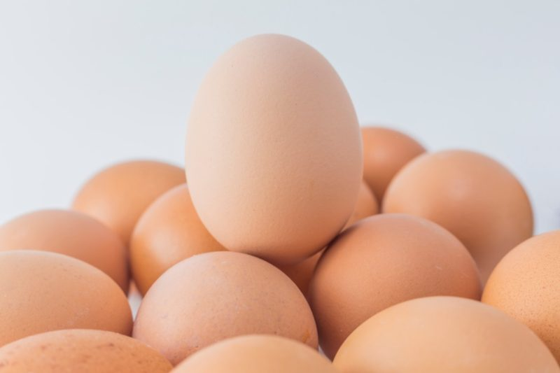 vajecny protein