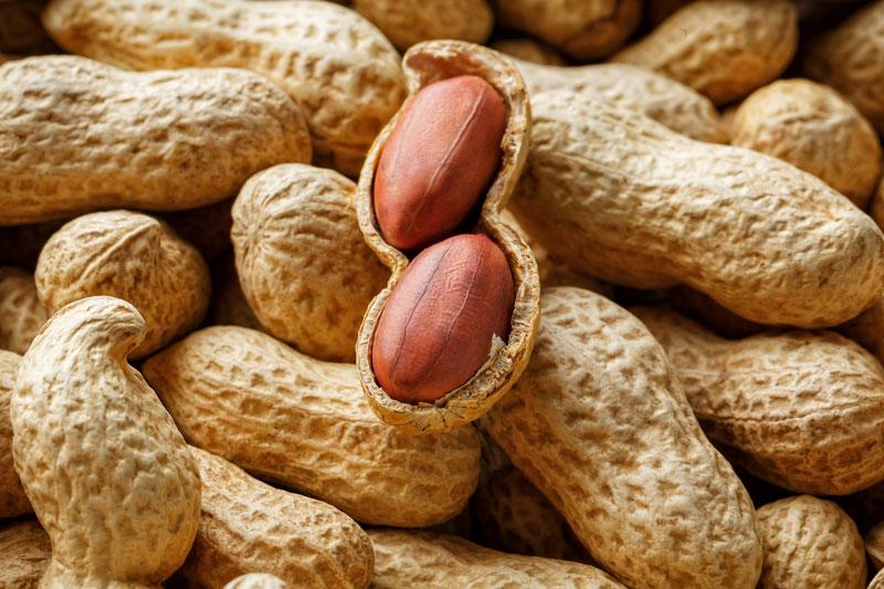 arašidy s obsahom cholínu