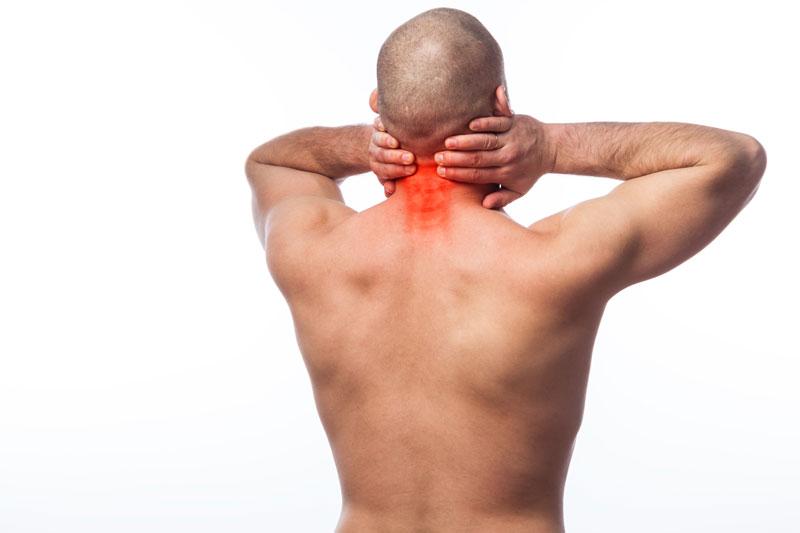 krčná chrbtica