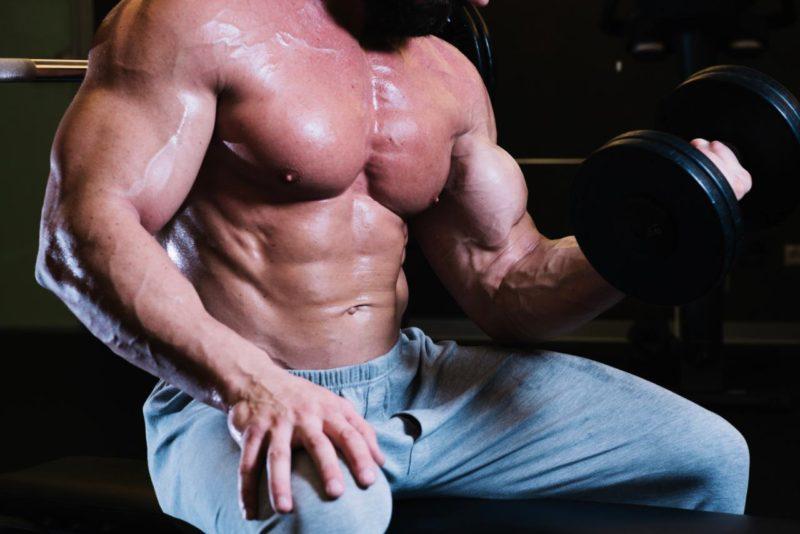 protein sila svaly rast objem