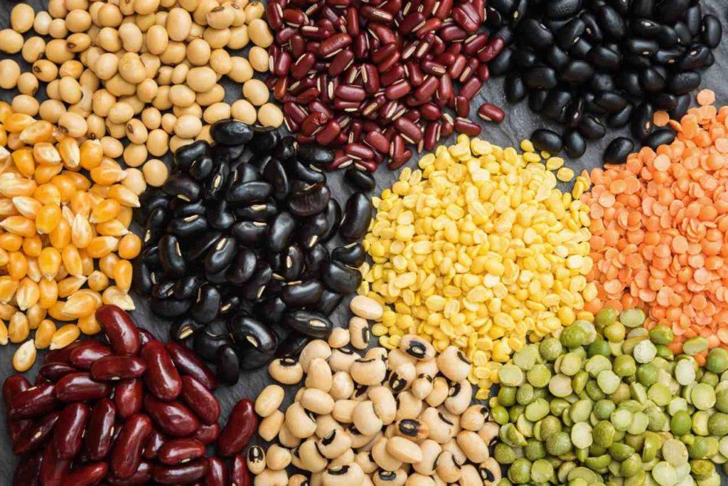 rastlinne bielkoviny strukoviny fazula sosovica