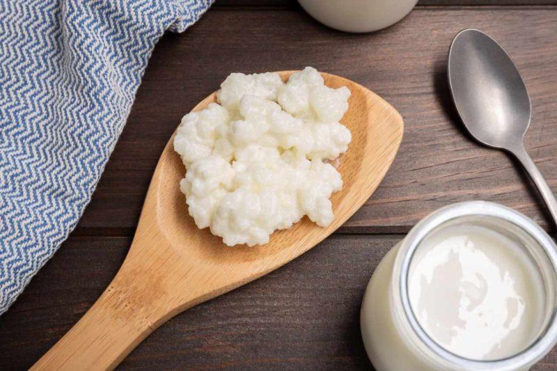 kyselina mliecna probiotika