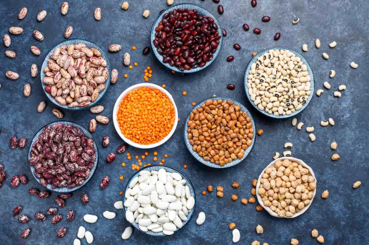 vegan proteín rastlinný strukoviny